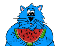Fat Cat - Watermelon