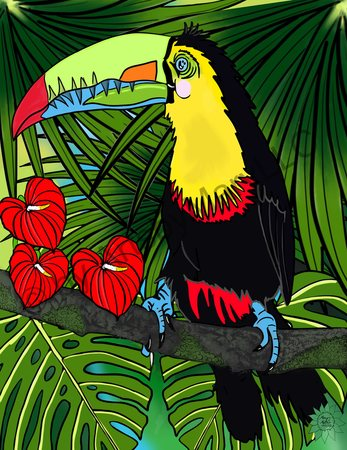 Charlie Toucan