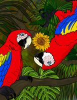Bugging You - Macaws